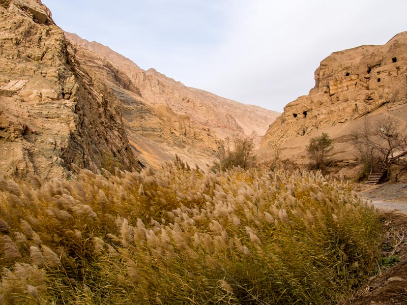 右邊就是千佛洞,但很多洞窟都在整修中