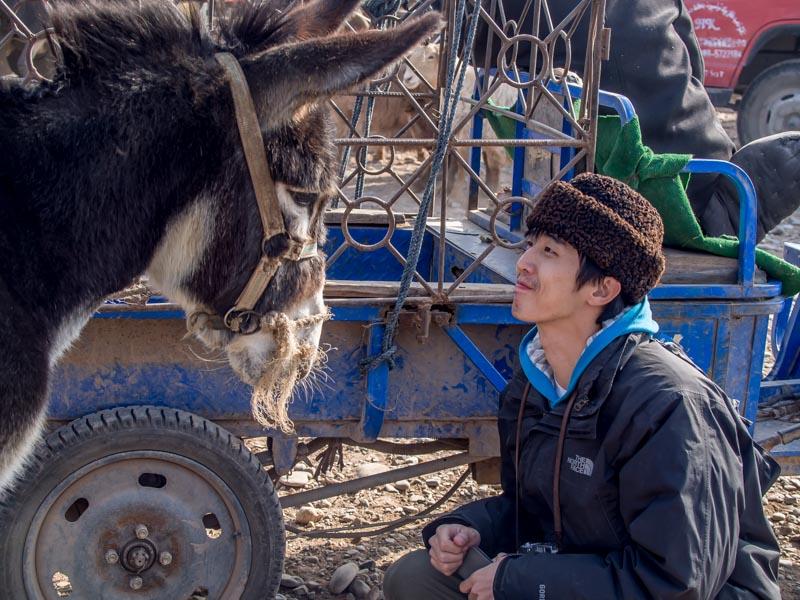亦達說想要買下這頭驢